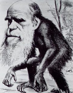 http://religioncompass.files.wordpress.com/2008/10/darwin-ape.jpg
