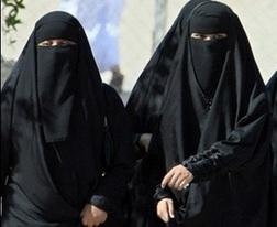 saudi arabia physical features pics